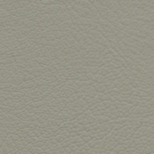 G-Grain Leather Light Taupe